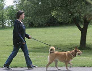 Huisoppasser.nl | Ook voor uw huisdier